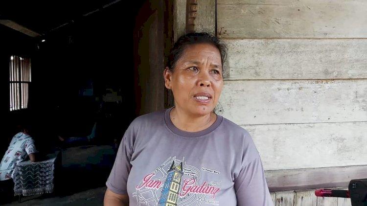Hasil Penjualan Ubinya Nihil, Petani di Kota Jambi Ini Makan Seadanya untuk Hidup