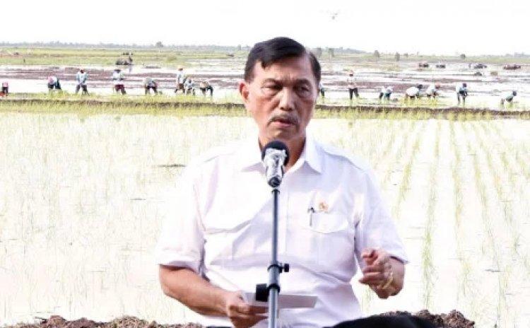 Gara-gara Nadiem, Kiai Sepuh Protes ke Luhut Soal Nama KH Hasyim Asy'ari Tak Masuk Kamus Sejarah