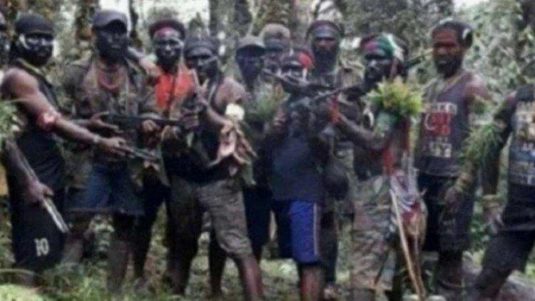 Soal KKB Teroris, PAN: TNI dan Polri Harus Tegas, Jangan lembek!