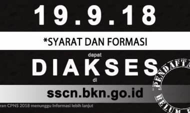 Calon Pendaftar Seleksi PNS Keluhkan Portal sscn.bkn.go.id Belum Bisa Diakses