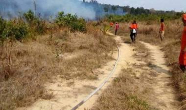 Hingga Pertengahan September Titik Api di Batanghari Meningkat