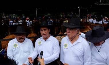 Warga Tagih Janji Menteri Pertanian Pengembangan Kembali Sapi di Konawe