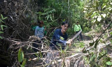 Hutan Rimbang Baling Riau Kini Dijaga Pengawal Adat Dubalang