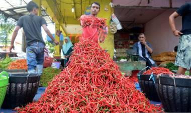 Harga Cabai Merah di Baturaja Capai Rp100.000/Kilogram