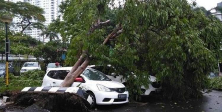 Sejumlah KRL Terganggu Akibat Pohon Tumbang, Hujan Es dan Hujan Badai