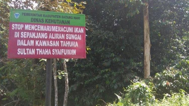 50 Hektar Kawasan Hutan Batanghari Direhabilitasi Pada 2019