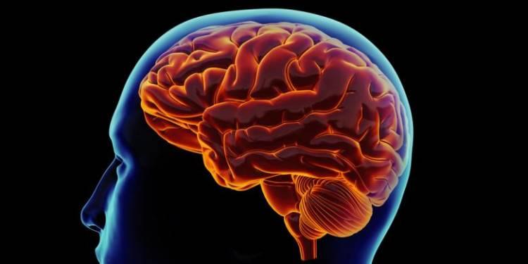 Dikira Tumor, Ternyata Infeksi Amuba Langka Pemakan Otak