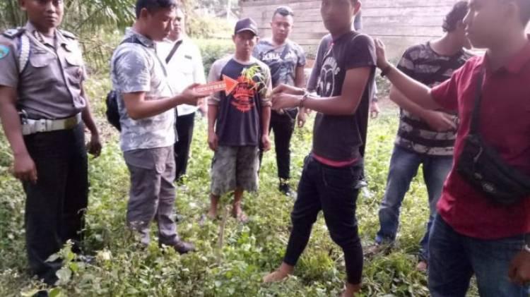 Ada Ladang Ganja di Tebo dan Tanjung Jabung Barat