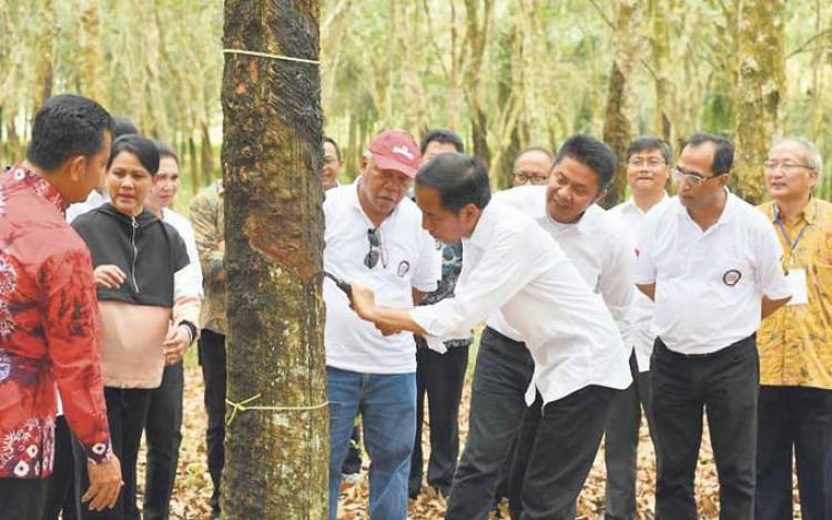 Herman Deru Sebut Presiden Setuju Pabrik Ban Berdiri di Sumsel