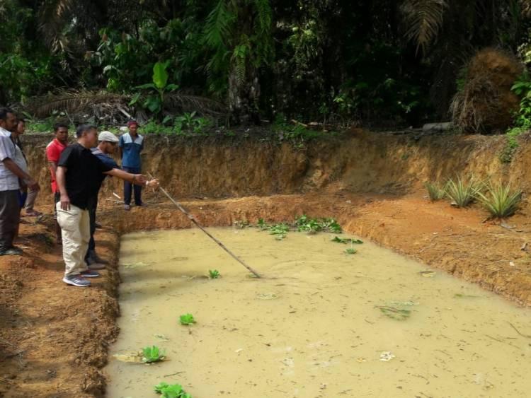 Ditinggal Sebentar, Bocah 5 Tahun Ditemukan Tewas di Kolam Ikan