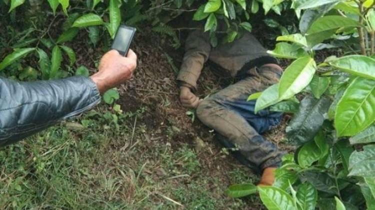 Heboh Warga Kerinci Temukan Mayat di Kebun Teh