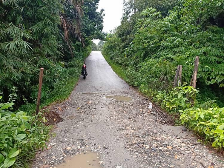 Jalan Empat Desa di Sarolangun Terancam Putus, Begini Kata PU