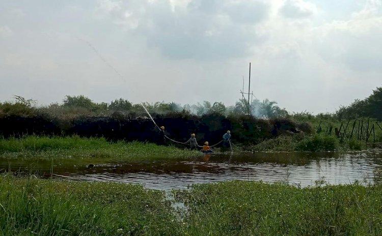 Lahan PT Kharisma Kemingking Terbakar, Manajemen: Tidak Ada Itu