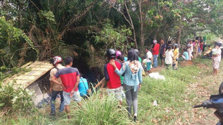 BREAKING NEWS!!! Dump Truk Berisi Aqua Terguling dalam Jurang di Jalinsum