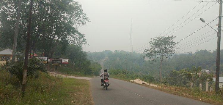 Kabut Asap Mulai Menyelimuti Kampung Halaman Gubernur Jambi