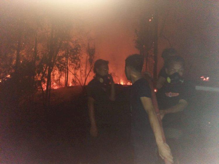 30 Hektar Lahan Warga Sungai Binjai Terbakar, Damkar Berjibaku Padamkan Api