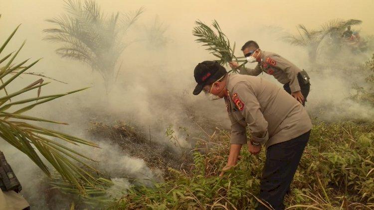 Ini Dia 18 Orang Perambah dan Pembakar Hutan di Konsesi PT Reki Ditetapkan Tersangka