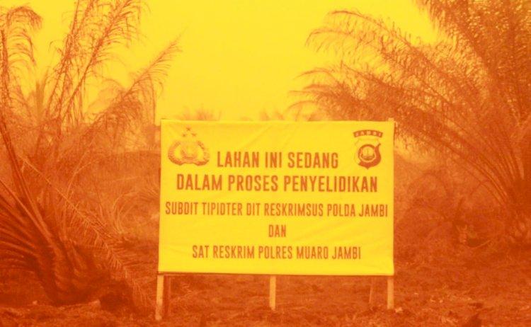 PT BEP Diduga Penyumbang Kabut Asap di Provinsi Jambi