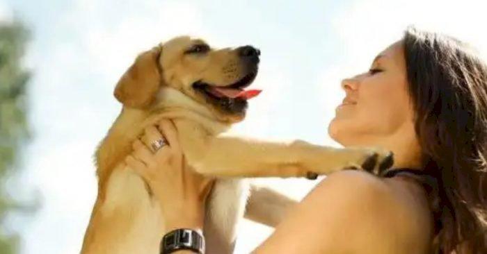 Frustasi Berkencan dengan Pria, Wanita Ini Ingin Menikah Dengan Anjing Peliharaan Serta Ajak Berhubungan Intim